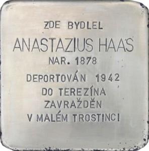 Anastazius Haas