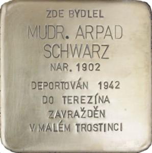 Arpad Schwarz
