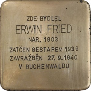 Erwin Fried