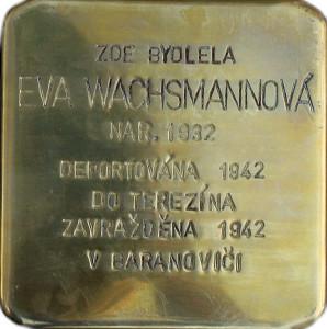 Eva Wachsmannová