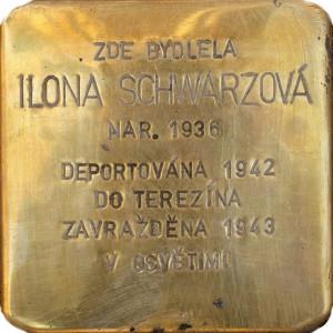 Ilona Schwarzová