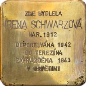 Irena Schwarzová
