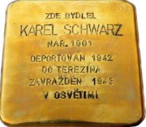 Karel Schwarz