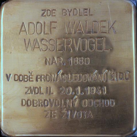 wasservogel_adolf_kamen